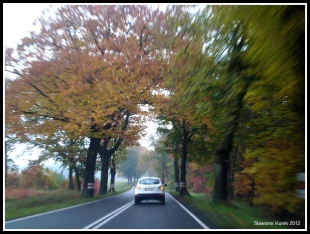 Żary - Żagań - jesień 2