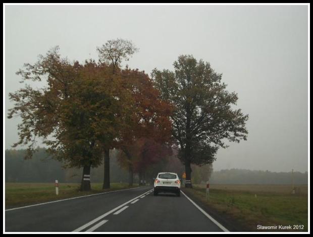 Żary - Żagań - jesień 3