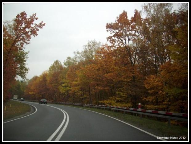 Żary - Żagań - jesień 4