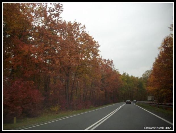 Żary - Żagań - jesień 5