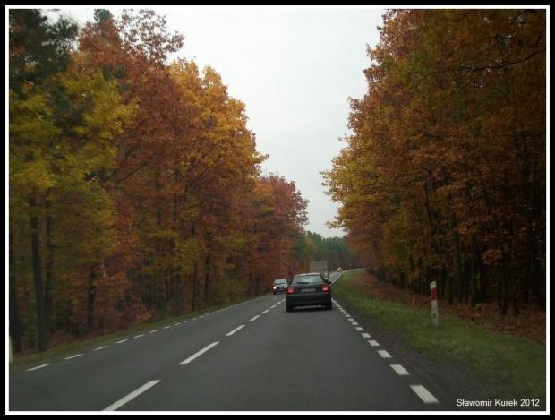 Żary - Żagań - jesień 6