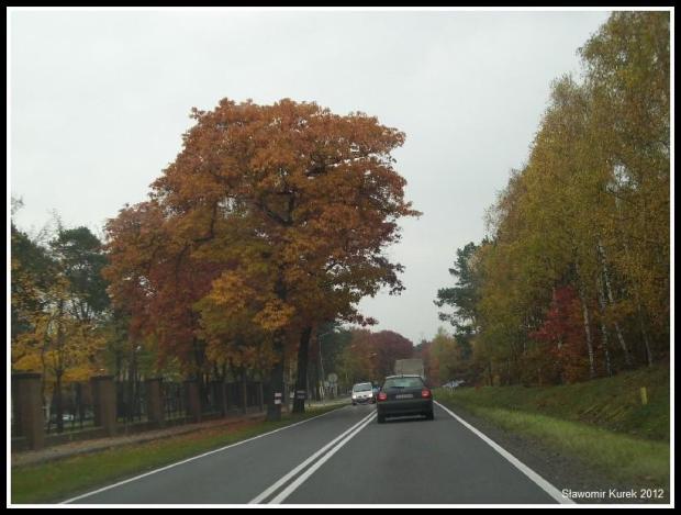 Żary - Żagań - jesień 8