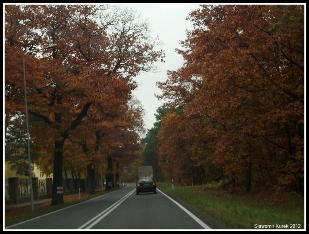Żary - Żagań - jesień 9