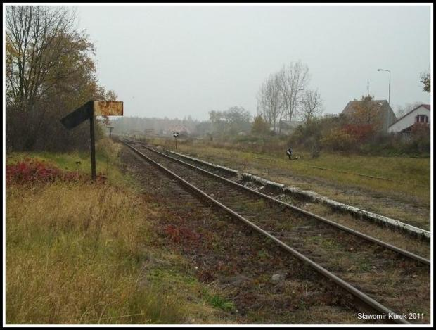 Nowogród - w stronę Zielonej Góry