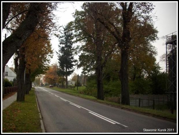 Nowogród - Żarska 1