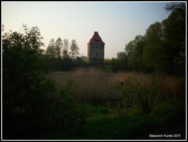 Dzietrzychowice - wieża 1