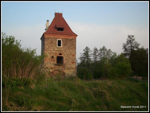 Dzietrzychowice - wieża 2