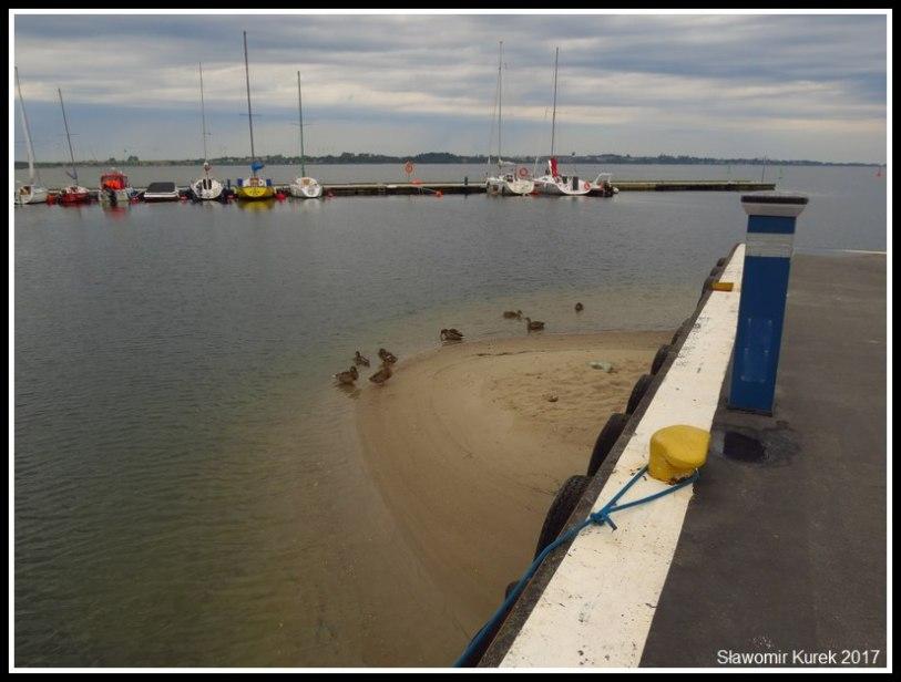 Puck - port rybacki 2