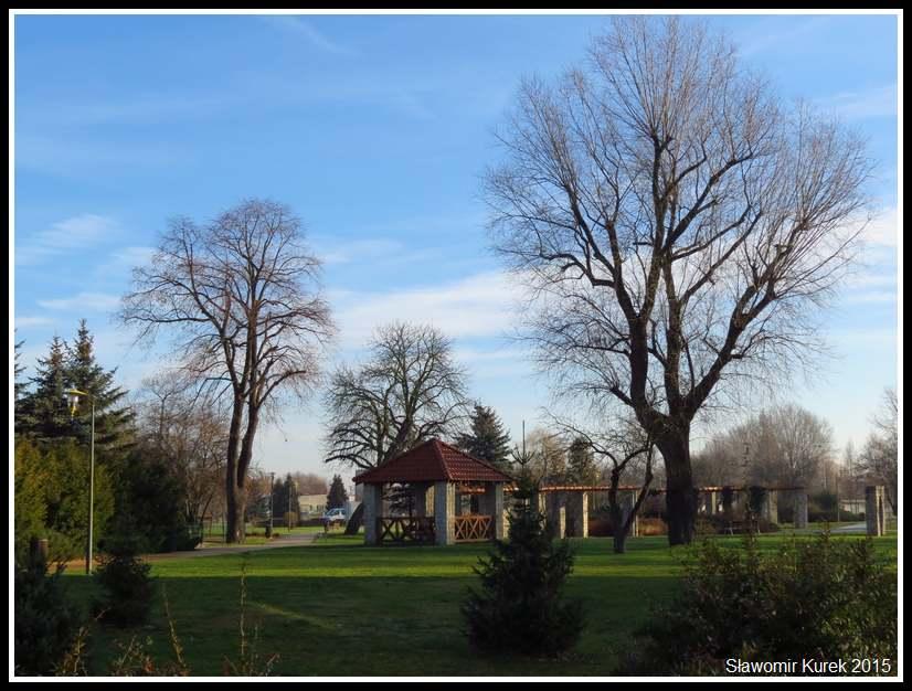 Lubin - park Wyżykowskiego 6