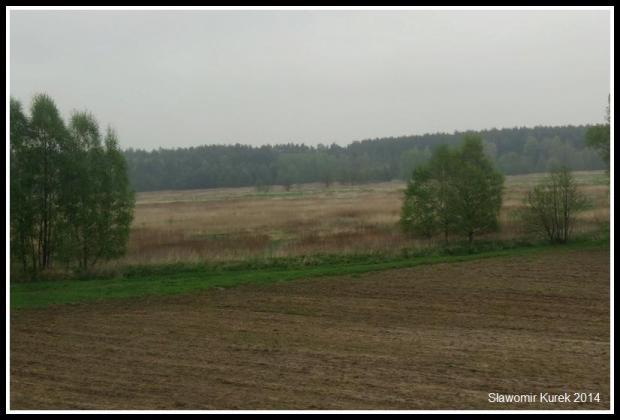 Oleśnica - Odolanów 1