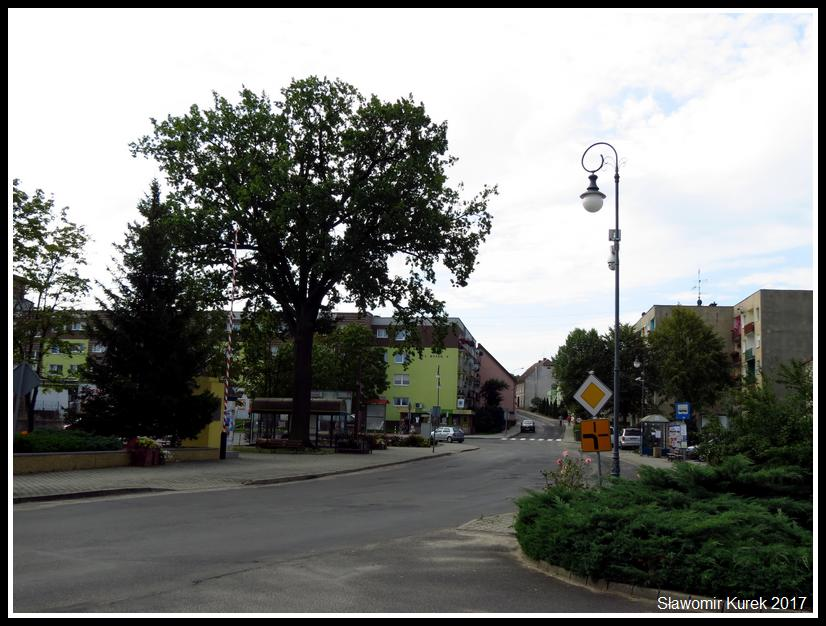 Nowogród Bobrzański - Rynek 2