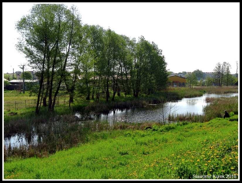 Gostynin - okolice zamku 4