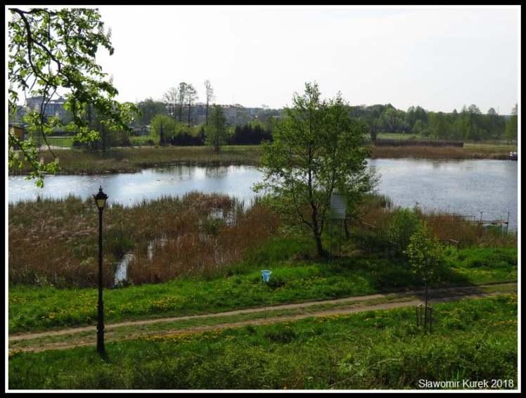 Gostynin - okolice zamku 2