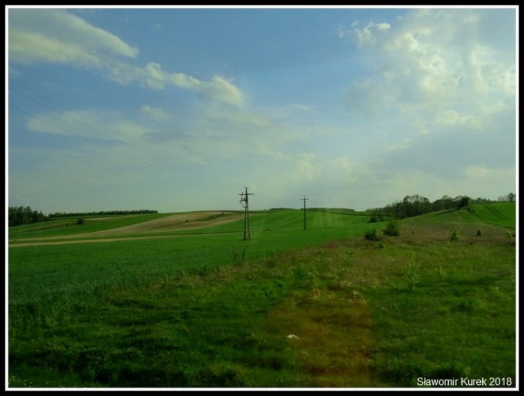 Gostynin - Kowal 3