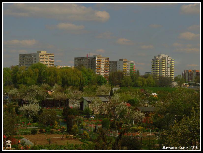 Opole 2