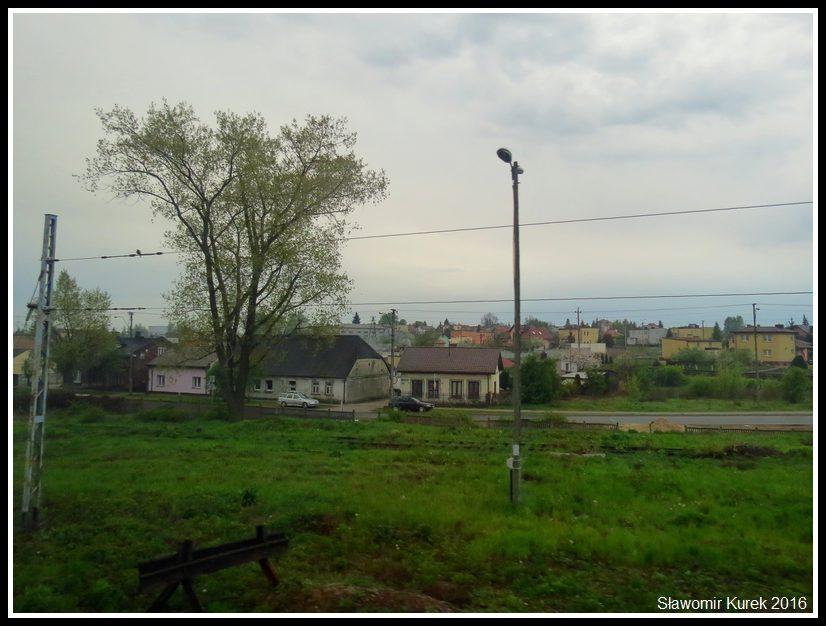 IMG_3439_Lakoszynska