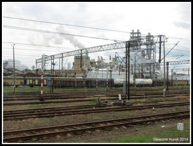 Szczeciek - Kronospan 2