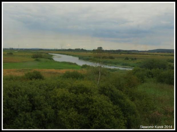 rzeka Noteć