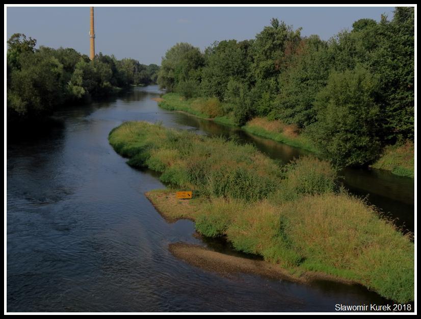 Żagań - znak na rzece 1