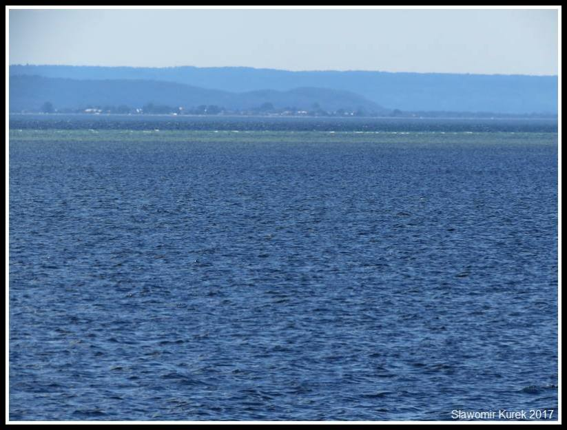 Jastarnia - nad Zatoą Pucką 4
