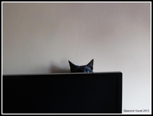 Maluś zza monitora